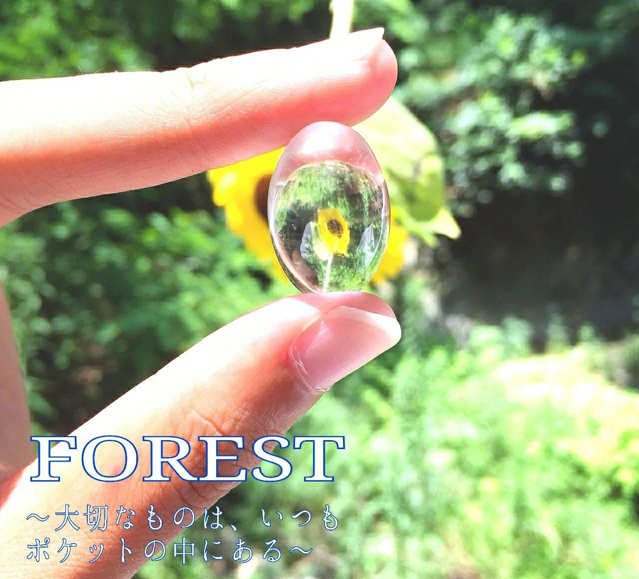 2018年8月24日(金)~8月29日(水)   FOREST 展